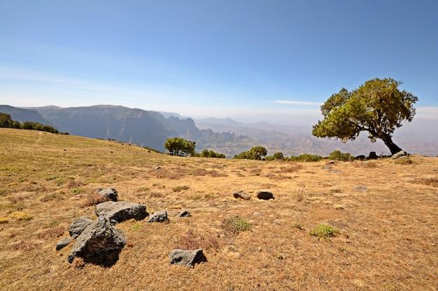 O simien mountain national park, na estação seca, etiópia, parque nacional de destino de viagem.