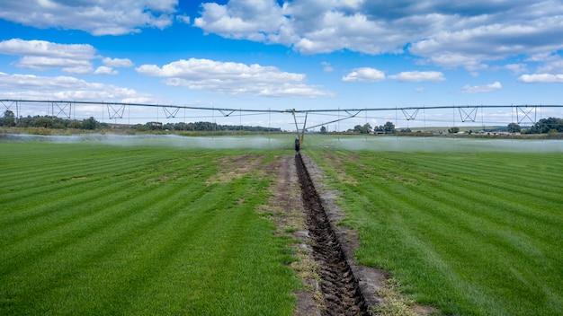 O sistema de irrigação de rega automática funciona em um campo agrícola