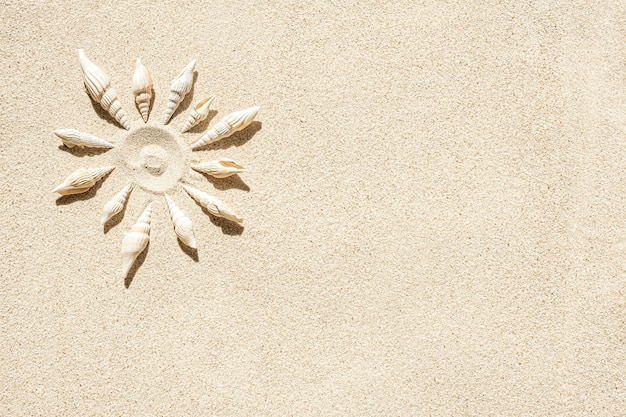 O sol forma conchas do mar na areia limpa, vista de cima, copie o espaço