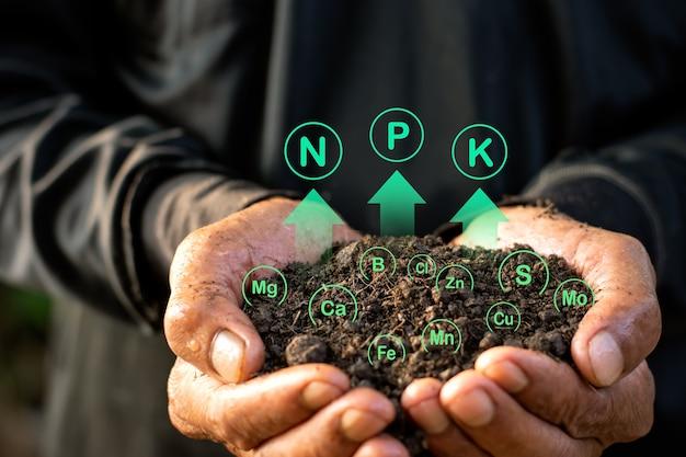 O solo é rico em minerais, adequado para cultivo nas mãos do homem