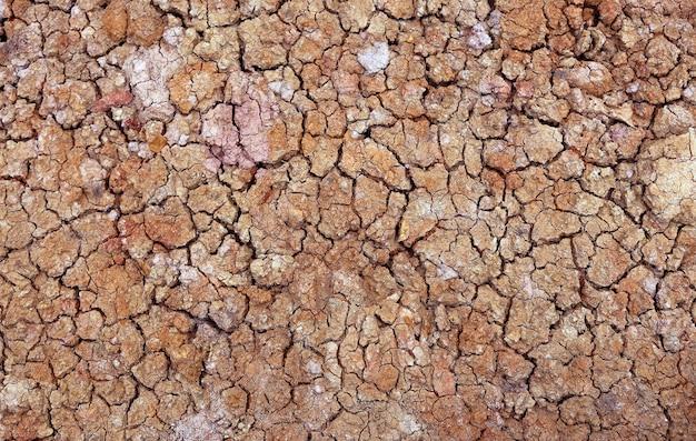O solo seco de perto não tem textura de água para o fundo da natureza