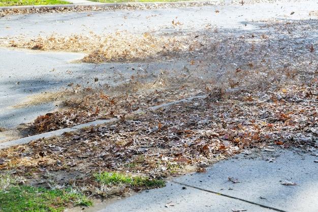 O soprador de folhas de trabalhador ao ar livre limpa as folhas caídas na estrada com um soprador no outono