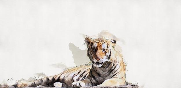 O tigre está deitado em um tronco de madeira. pintura aquarela.