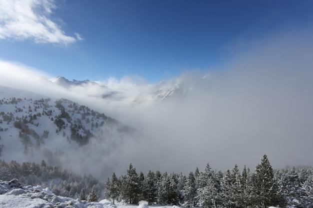 O topo das montanhas com a floresta coberta de neve, nevoeiro e nuvens em um dia ensolarado e gelado