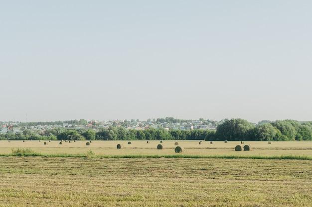 O trator ara o chão. monte de feno depois de trabalhar com um trator agricultura, enfardamento, enfardadeira, colheita de feno no campo de verão.