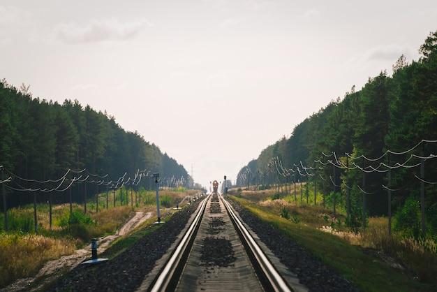 O trem místico viaja de trem ao longo da floresta. semáforo ferroviário e locomotiva na ferrovia à distância