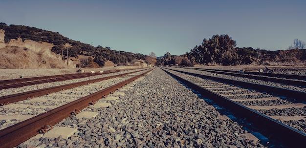 O trem segue com o céu azul na natureza