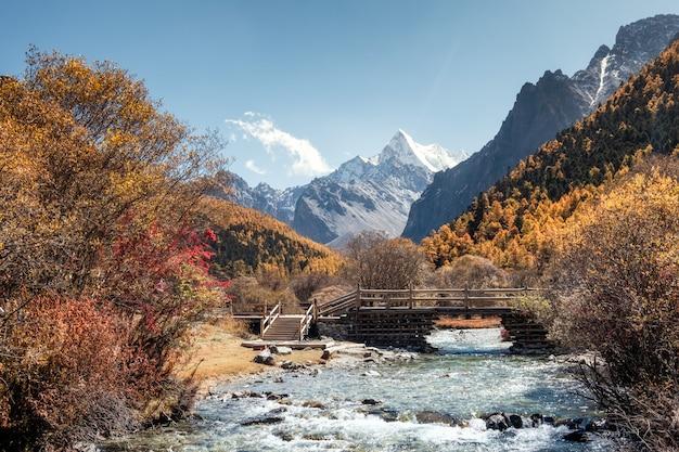 O último shangri-la com chana dorje montanha na floresta de pinheiros de outono