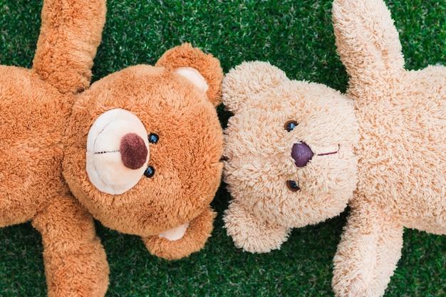 O ursinho de pelúcia dormia na grama cara feliz