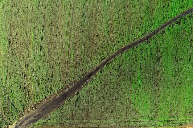 O uso de drones na agroindústria