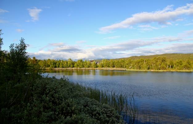 O vale com lago e floresta