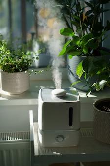 O vapor do umidificador umedece o ar seco cercado por plantas de interior para jardim doméstico.