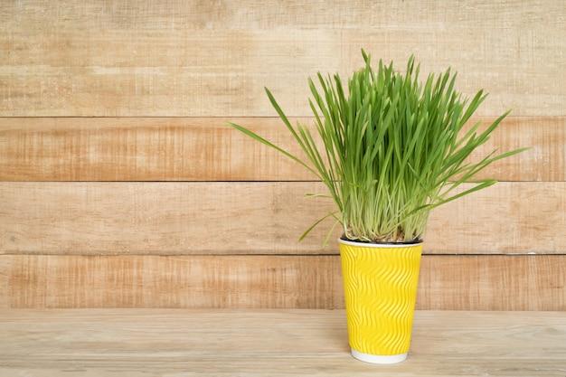 O vaso de flores amarelo com verdes em cima da mesa fica em um espaço de parede de madeira marrom claro. copie o espaço