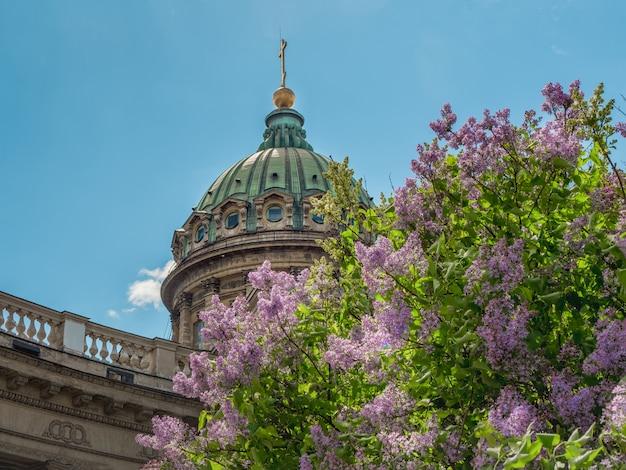 O verão cênico com a catedral de kazan em flores lilás