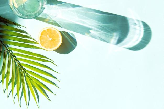 O verão fresco bebe limonada ou refrigerante em vidro sobre fundo de cor azul com sombras de folhas de palmeira