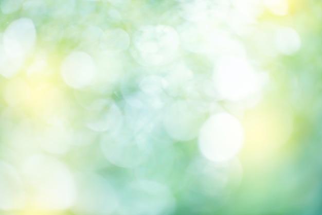 O verde natural deixa o fundo do bokeh.