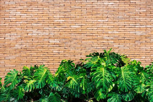 O verde sae com a parede de tijolo com espaço livre para o texto. abstrato.