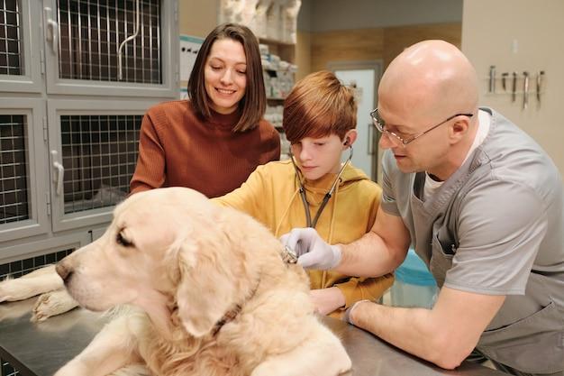 O veterinário maduro ouvindo um cachorro com estetoscópio e os donos em pé perto de sua clínica