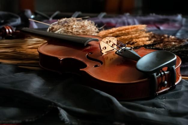 O violino de madeira colocado ao lado de flores secas