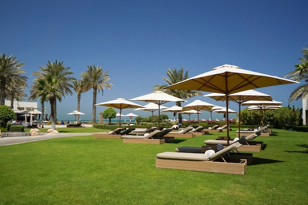 Oásis do hotel de abu dhabi no golfo arábico, abu dhabi. praia ecológica.