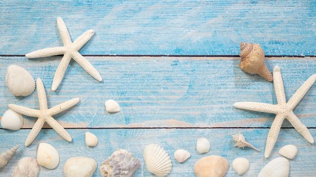 Objetos marinhos, conchas e estrelas do mar na madeira