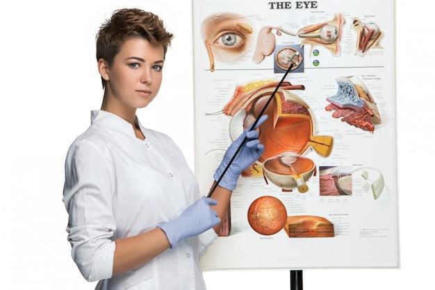 Oculista ou oculista mulher fala sobre a estrutura do olho