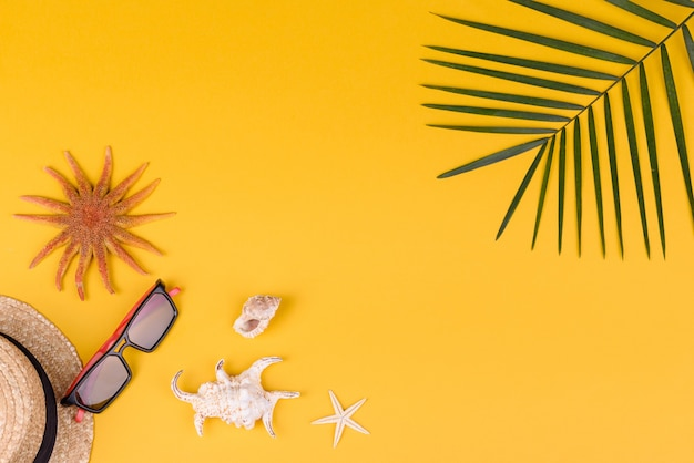 Óculos de sol e estrelas do mar com folha de palmeira em uma superfície colorida