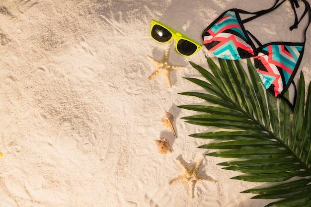 Óculos de sol em folha de palmeira e maiô na praia
