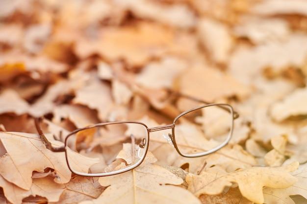 Óculos nas folhas de outono