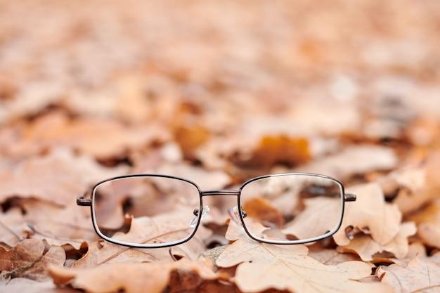 Óculos perdidos nas folhas de outono