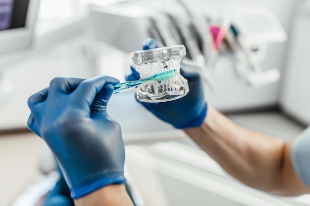 Odontologia. modelos de dentes humanos. fabricação de próteses dentárias. instalação de implantes com escova de dentes.