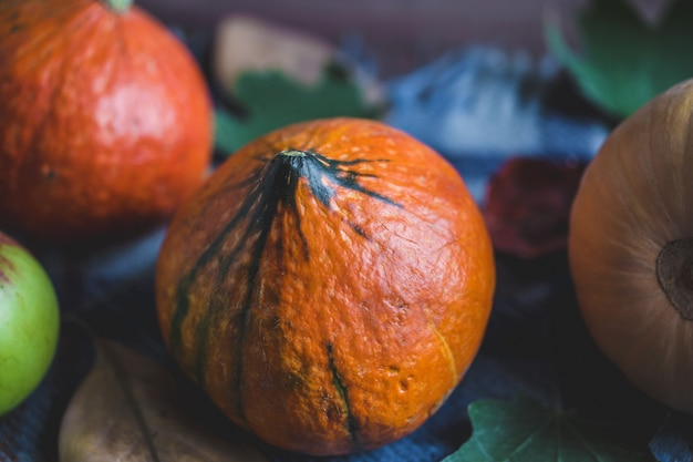 Olá outono. abóboras alaranjadas maçãs folhagem de outono xadrez em um fundo de madeira
