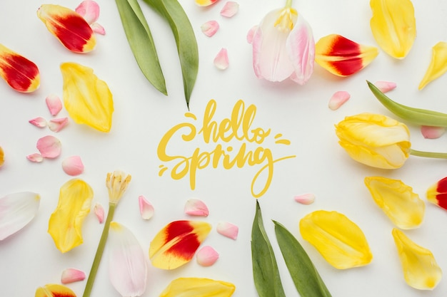 Olá palavra de primavera e pétalas de flores