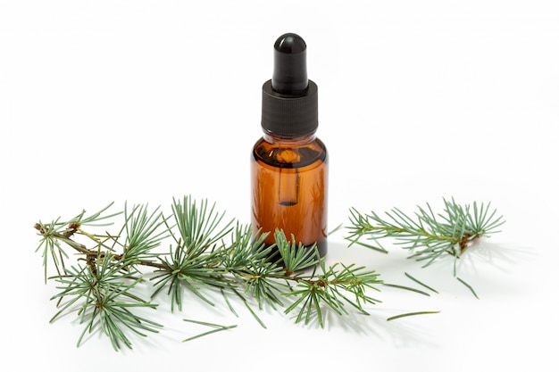 Óleo de abeto para a pele, spa, bem-estar, massagem, aromaterapia e medicina natural