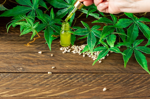 Óleo de cânhamo cbd, mão segurando uma garrafa de óleo de cannabis na pipeta.