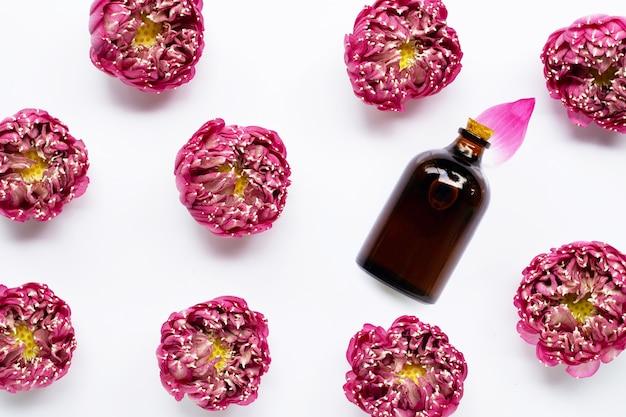 Óleo essencial com flor de lótus rosa em fundo branco.
