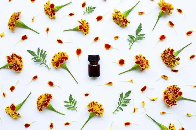 Óleo essencial de flor de calêndula