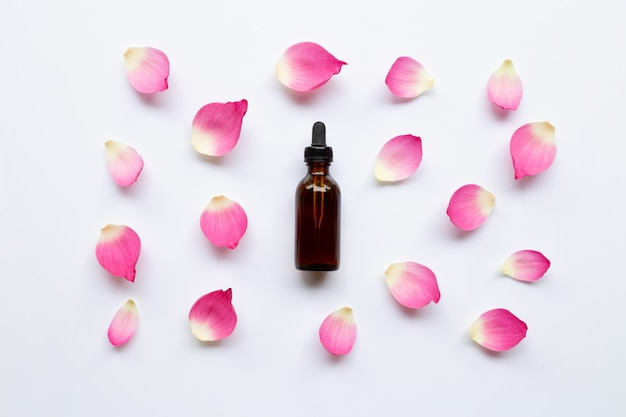Óleo essencial de lotus com as pétalas dos lótus no fundo branco.