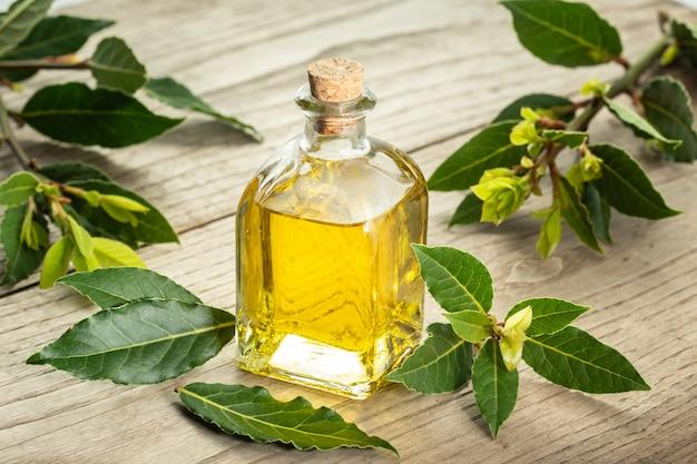 Óleo essencial de louro isolado em frasco de vidro