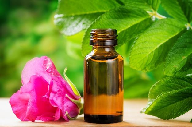 Óleo essencial de rosa mosqueta em uma garrafa de vidro na mesa em meio a folhagem