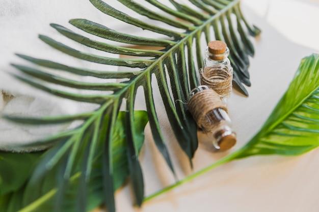 Óleo essencial perto de folhas de palmeira