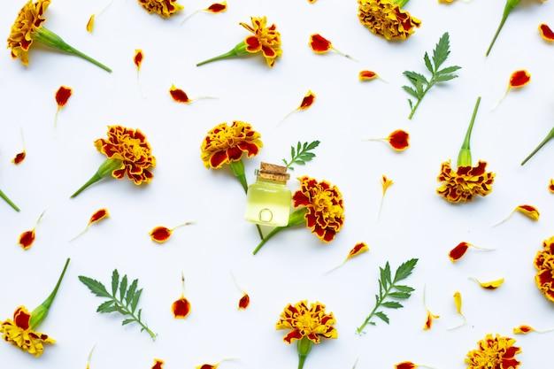 Óleos essenciais de flor de calêndula