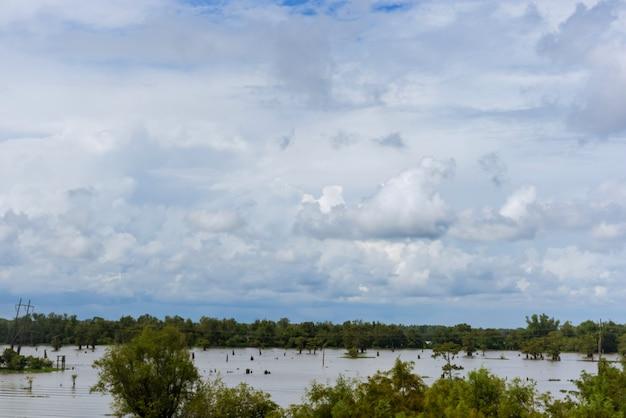 Olhando para as árvores inundadas e prados rurais no campo, enquanto as chuvas inundam as áreas rurais