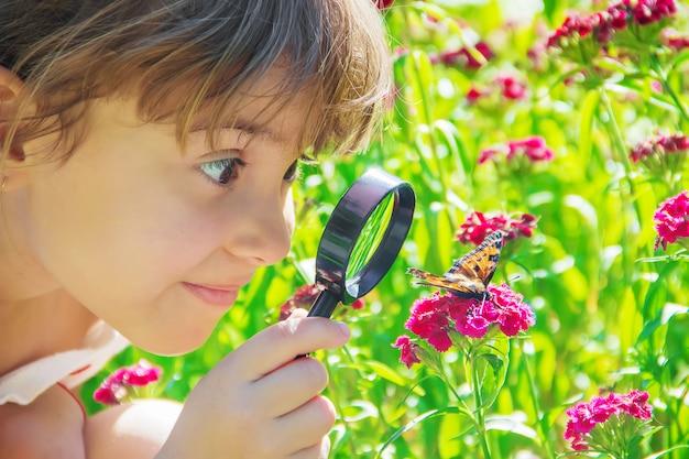 Olhe em uma borboleta da lupa senta-se em flores. foco seletivo.