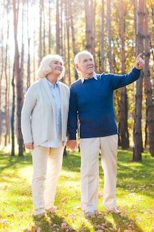 Olhe para lá. comprimento total do feliz casal sênior de mãos dadas e caminhando pelo par enquanto um homem apontando para longe