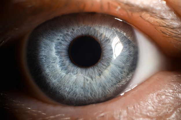 Olho azul masculino humano super macro closeup