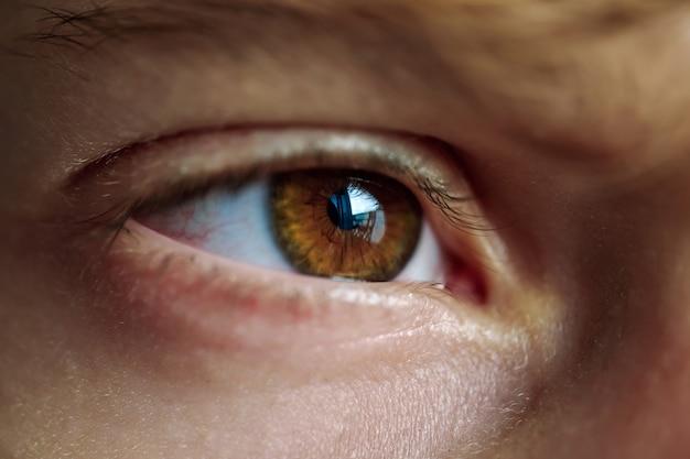 Olho castanho da pessoa com reflexo