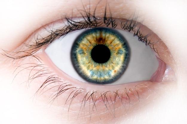 Olho de beleza macro humana
