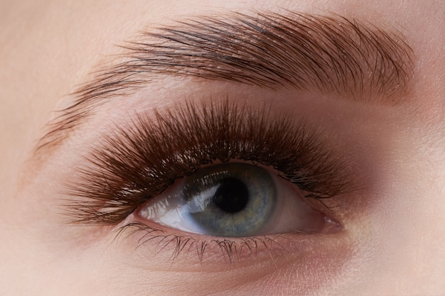 Olho de menina com íris azul claro e sobrancelha marrom