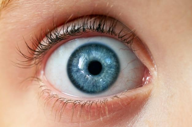 Olho de uma mulher azul